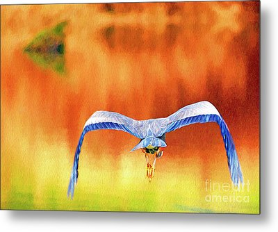 Metal Print featuring the digital art Great Blue Heron Winging It Photo Art by Sharon Talson