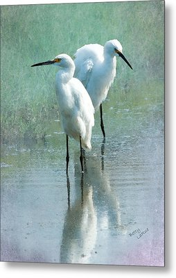 Great Egrets Metal Print by Betty LaRue