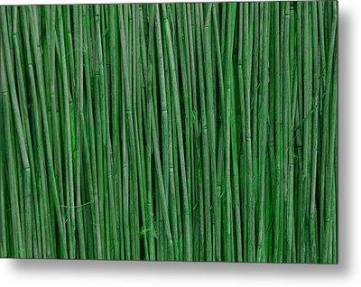 Green Bamboo Metal Print