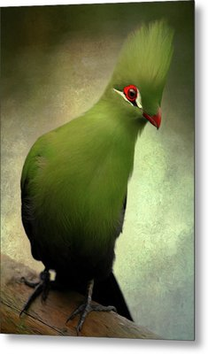 Green Crested Parrot Art Metal Print by Georgiana Romanovna