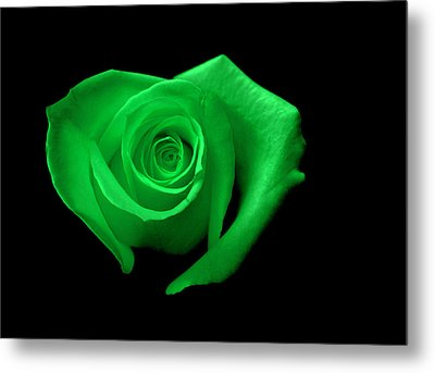 Green Heart-shaped Rose Metal Print by Glennis Siverson