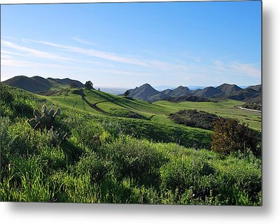 Metal Print featuring the photograph Green Hills Landscape With Cactus by Matt Harang