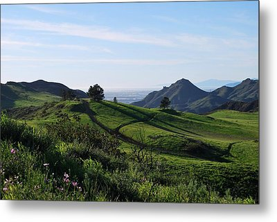 Metal Print featuring the photograph Green Hills Purple Flowers Foreground  by Matt Harang