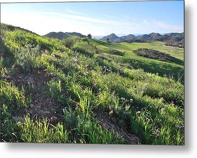 Metal Print featuring the photograph Green Hills Purple Flowers - Rocky View by Matt Harang
