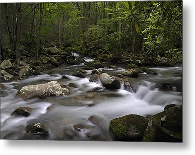 Greenbrier In The Great Smoky Mountains Metal Print by Darrell Young