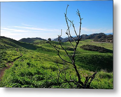 Metal Print featuring the photograph Greenery In The Hills Landscape by Matt Harang