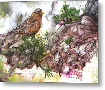 Metal Print featuring the painting Grey Crown Rosy Finch by Sherry Shipley