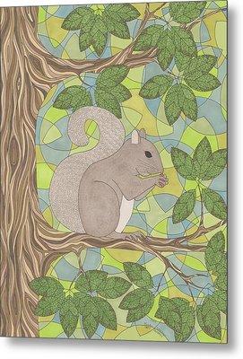 Grey Squirrel Metal Print by Pamela Schiermeyer
