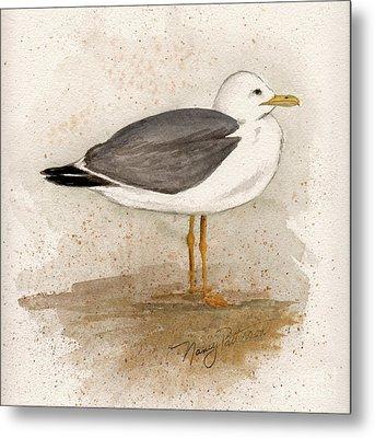 Gull Metal Print by Nancy Patterson