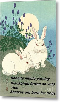 Haiku  Rabbits Nibble Parsley Metal Print by Pg Reproductions