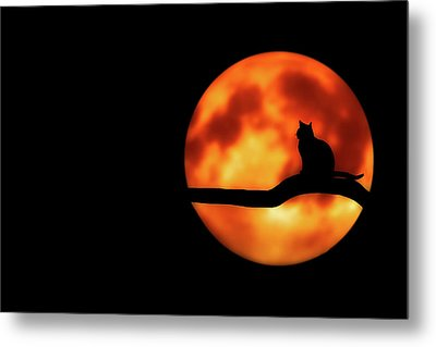 Halloween Night Metal Print