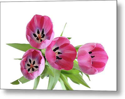 Metal Print featuring the photograph Happy Pink by Marie Leslie