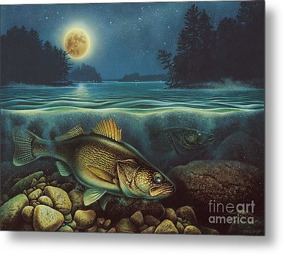 Harvest Moon Walleye IIi Metal Print by JQ Licensing