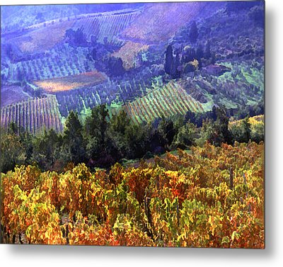 Harvest Time At The Vineyard Metal Print by Elaine Plesser