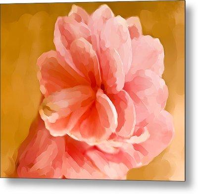 Hawian Ginger Flower Metal Print by Daniel D Miller