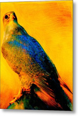 Hawk Spirit Metal Print