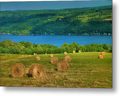 Hayfield And Lake Iv Metal Print by Steven Ainsworth