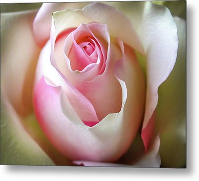 He Loves Me Still Metal Print by Karen Wiles
