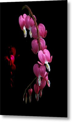 Metal Print featuring the photograph Hearts In The Dark by Susan Capuano