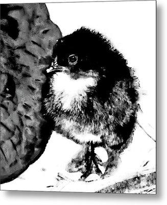 Hello Baby Chick Metal Print