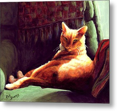 Henry In Sunshine Metal Print