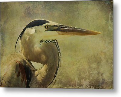 Heron On Texture Metal Print