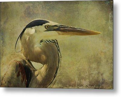 Heron On Texture Metal Print by Deborah Benoit