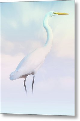 Heron Or Egret Stance Metal Print by Joseph Hollingsworth