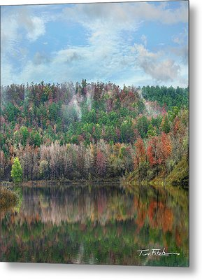 Hickory Forest Metal Print