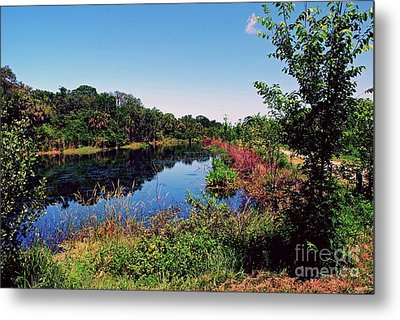 Metal Print featuring the photograph Hidden Lake by Gary Wonning