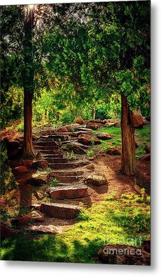 Hidden Path At Honor Heights Park Metal Print