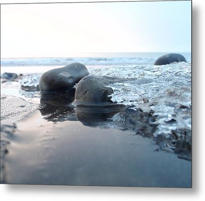 Metal Print featuring the photograph Hide And Seek by Mira Cooke