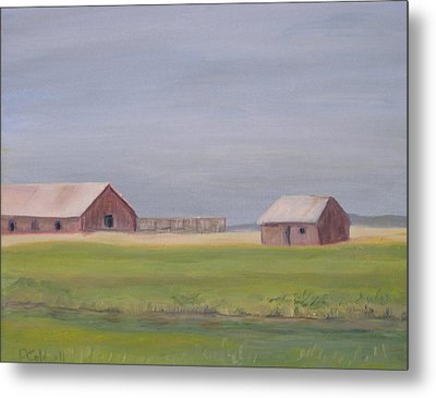 High Plains Metal Print by Patricia Caldwell
