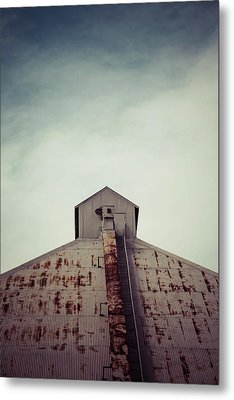 Metal Print featuring the photograph High View by Trish Mistric