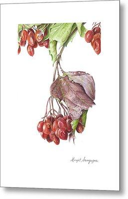 Metal Print featuring the painting Highbush Cranberry  by Margit Sampogna
