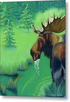 Highlands Metal Print by Tracy L Teeter