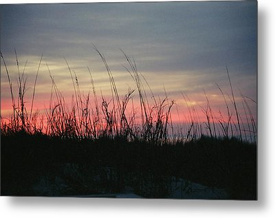 Hilton Head Grass At Sunrise Metal Print