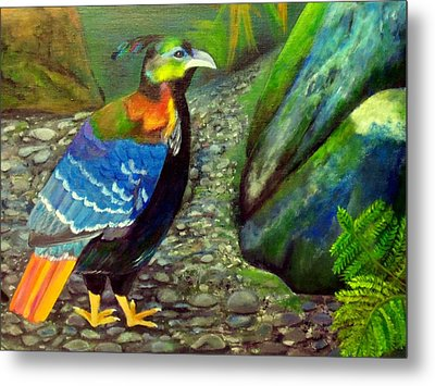 Himalayan Monal Pheasant Metal Print by Jennie Robin