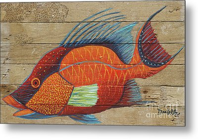 Hogfish Metal Print by Danielle Perry