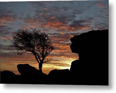 Holwell Tor And Lone Tree On Dartmoor Metal Print by Pete Hemington