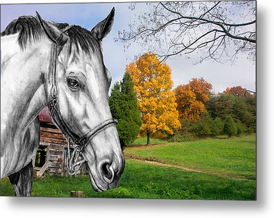 Home Again Metal Print by Russ  Smith