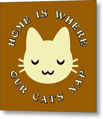 Home Is Where Our Cats Nap Metal Print by David G Paul