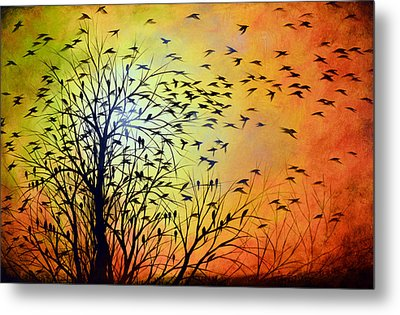 Homeward Metal Print by Amy Giacomelli