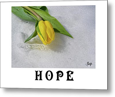 Metal Print featuring the photograph Hope by Traci Cottingham