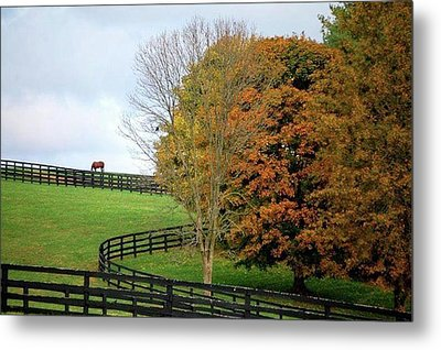 Horse Farm Country In The Fall Metal Print