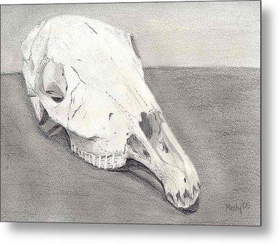 Horse Skull Metal Print by Mendy Pedersen