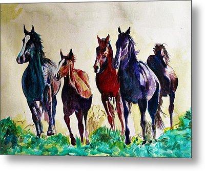 Horses In Wild Metal Print