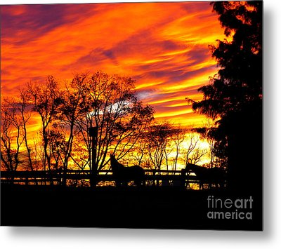 Horses Under A Painted Sky Metal Print