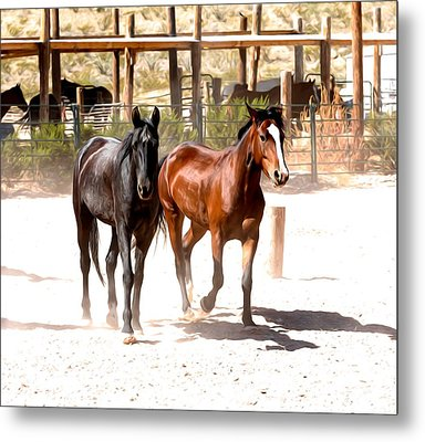 Horses Unlimited_6a Metal Print