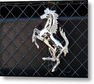 Metal Print featuring the photograph Horsey by John Schneider